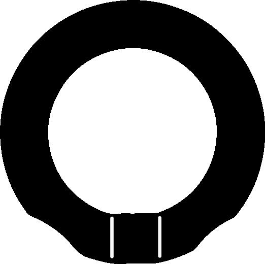 Mosquetón circular